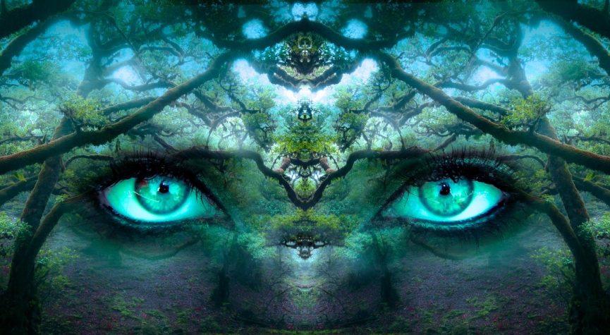 Traumdeutung: Phantasie und Traum