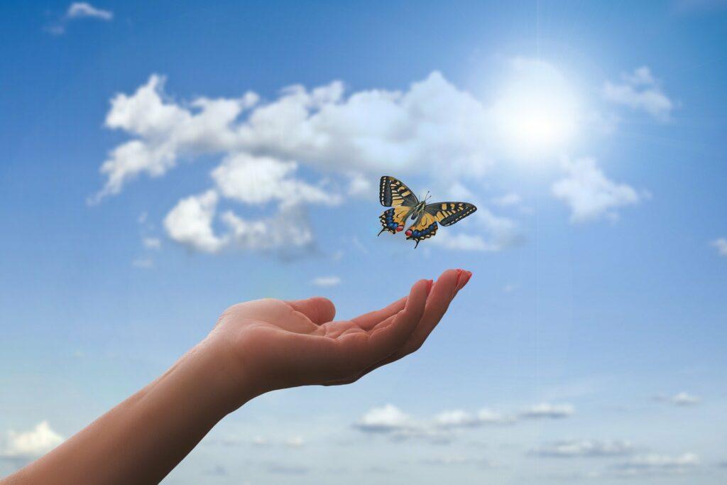 Eine Hand lässt einen schwarz-gelben Schmetterling fliegen. Dahinter ist blauer Himmel mit weißen Wolken. Dankbar sein, dass der Wunsch sich erfüllt.