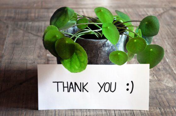 Dankbar sein: Mit 3 Schritten Ihr Leben verändern 1